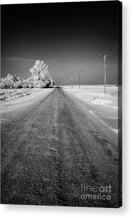 Salt Acrylic Print featuring the photograph salt and grit covered rural small road in Forget Saskatchewan Canada by Joe Fox