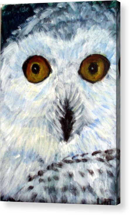 Owl Acrylic Print featuring the painting  Whoo Me by Lia Marsman