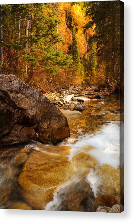 Autumn Acrylic Print featuring the photograph Mountain Stream In Autumn by Utah Images