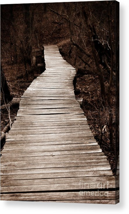 Path Acrylic Print featuring the photograph Path To Nowhere by Jeannie Burleson