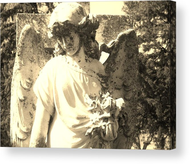 Angel Acrylic Print featuring the photograph Rose by Cindy Fleener