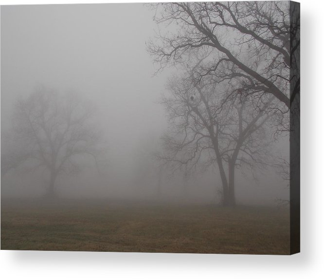 Fog Acrylic Print featuring the photograph Foggy Morning by Virginia Kay White