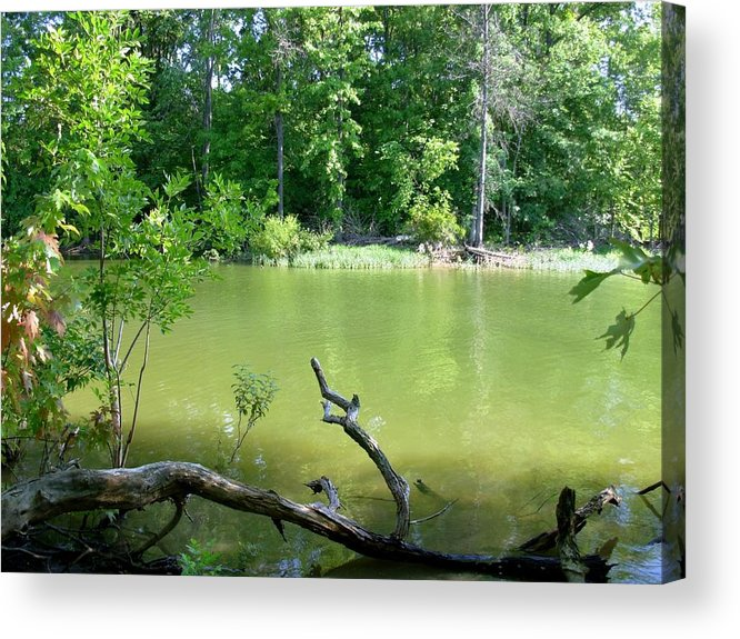 Lake Acrylic Print featuring the photograph 1246c1 by Kimberlie Gerner
