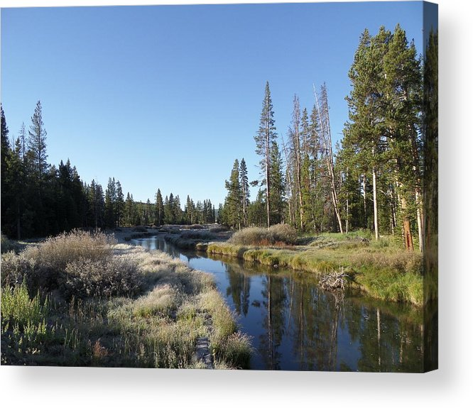 Blue Acrylic Print featuring the photograph A Frosty Morning Along Obsidian Creek by Frank Madia
