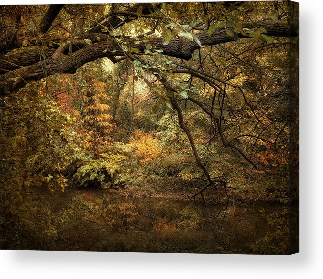 Autumn Acrylic Print featuring the photograph A Glimpse Of Autumn by Jessica Jenney