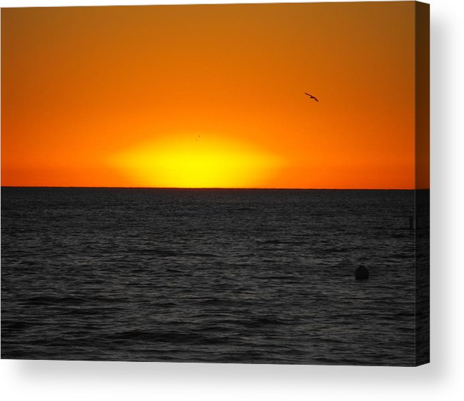Sunset Acrylic Print featuring the mixed media Alone by Tim Anderson