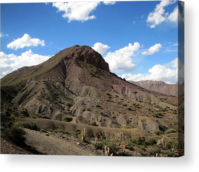Dry Acrylic Print featuring the photograph Arid Landscape by Elizabeth Hardie