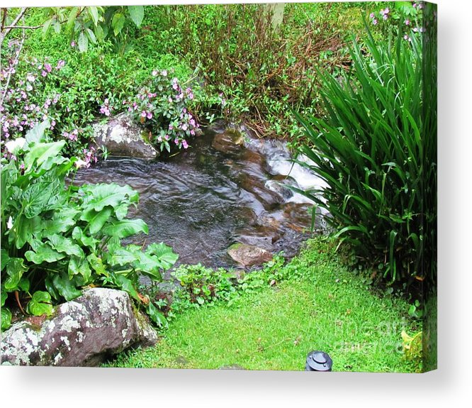 Panama Acrylic Print featuring the photograph Barriles Small Stream by Ted Pollard