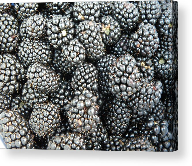 Fruit Acrylic Print featuring the photograph Blackberries by Tina Camacho