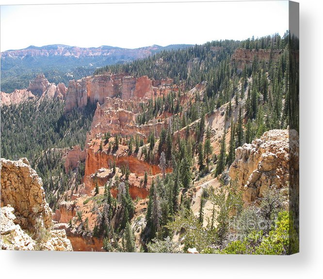 Rocks Acrylic Print featuring the photograph Bryce Canyon View by Christiane Schulze Art And Photography