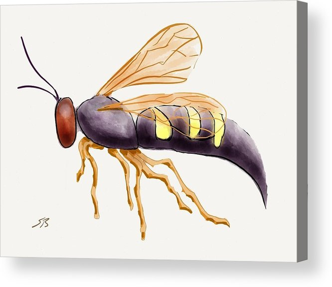 Wasp.insect Acrylic Print featuring the digital art Cicada Killer Wasp by Stacy C Bottoms