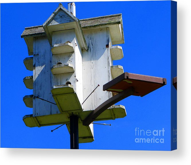 Bird Acrylic Print featuring the photograph Closer Look At The Birdhouse by Tina M Wenger