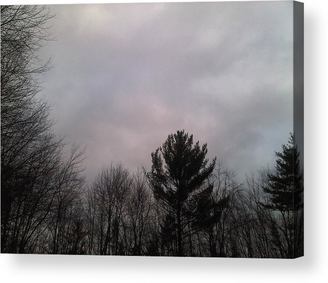 Trees Acrylic Print featuring the photograph Cloudy Day by Lorrie M Nelson
