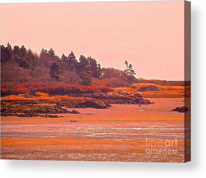 Maine Acrylic Print featuring the photograph Coastal Bay At Low Tide by Paul Galante