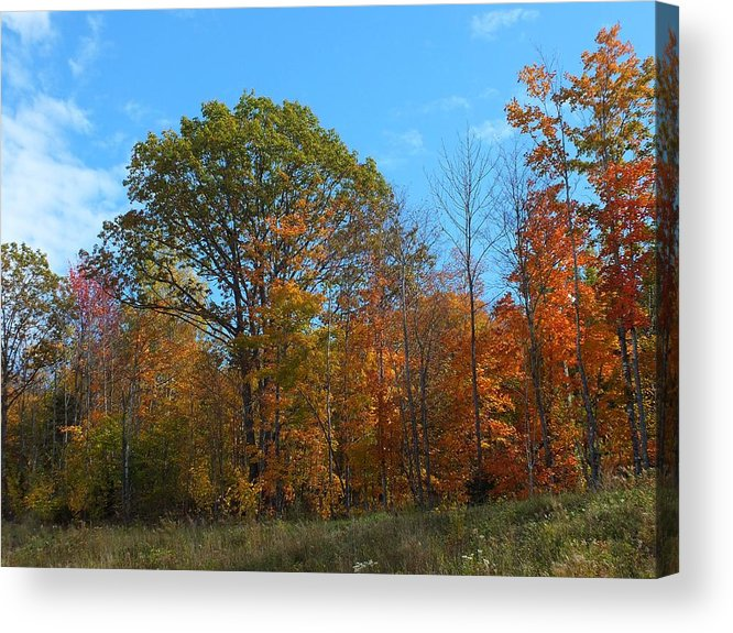 New England Acrylic Print featuring the photograph Colors Of Fall 1 by Gene Cyr