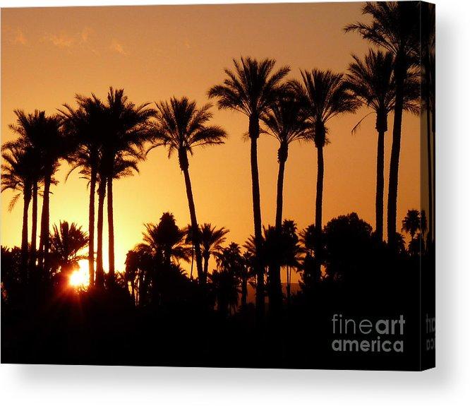 California Acrylic Print featuring the photograph Desert Silhouette Sunrise by Deborah Smolinske