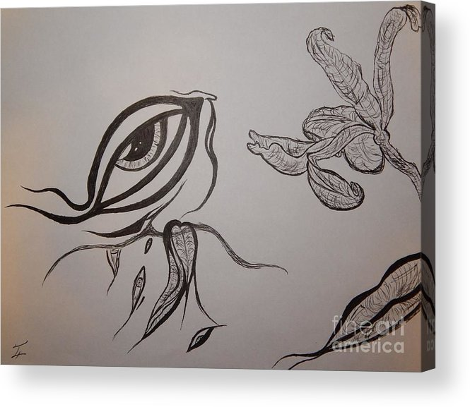 Drained Acrylic Print featuring the drawing Drained By The Bloom by Thommy McCorkle