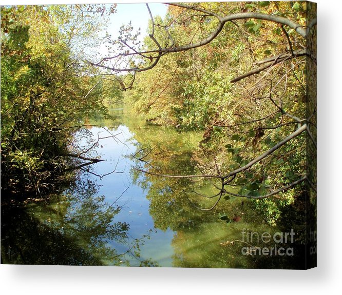 Nature Acrylic Print featuring the photograph Dream State by Tahlula Arts