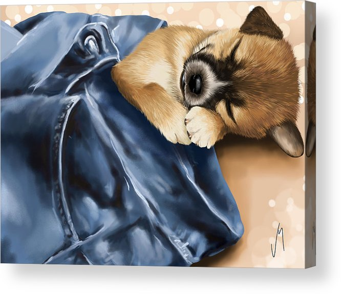 Dog Acrylic Print featuring the painting Dreaming by Veronica Minozzi