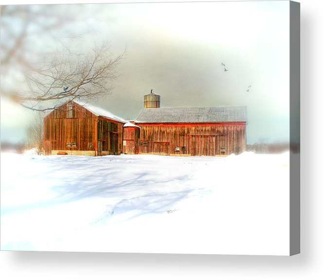 Dreamy Acrylic Print featuring the photograph Dreams Of A White Christmas by Mary Timman