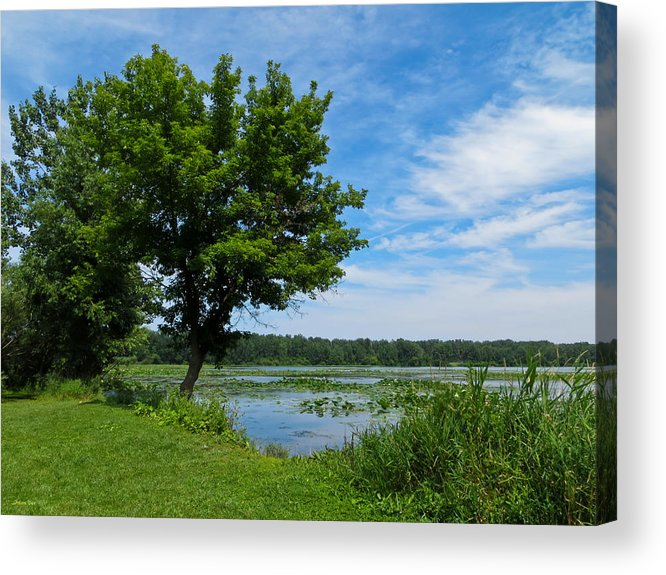 East Harbor Acrylic Print featuring the photograph East Harbor State Park - Scenic Overlook 2 by Shawna Rowe