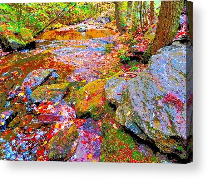 Landscape Acrylic Print featuring the photograph Fall 2014 Y213 by George Ramos