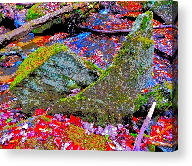 Landscape Acrylic Print featuring the photograph Fall 2014 Y220 by George Ramos