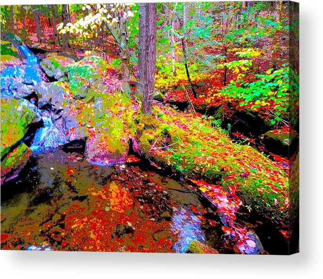 Landscape Acrylic Print featuring the photograph Fall 2014 Y236 by George Ramos