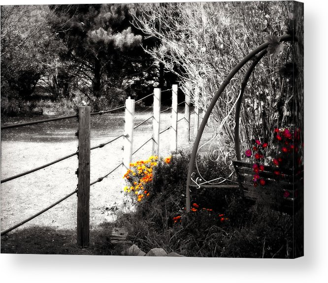 Top Selling Acrylic Print featuring the photograph Fence Near The Garden by Julie Hamilton