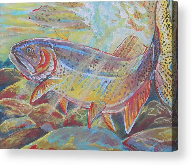 Fish Acrylic Print featuring the painting Fine Spotted Cutthroat Trout by Jenn Cunningham