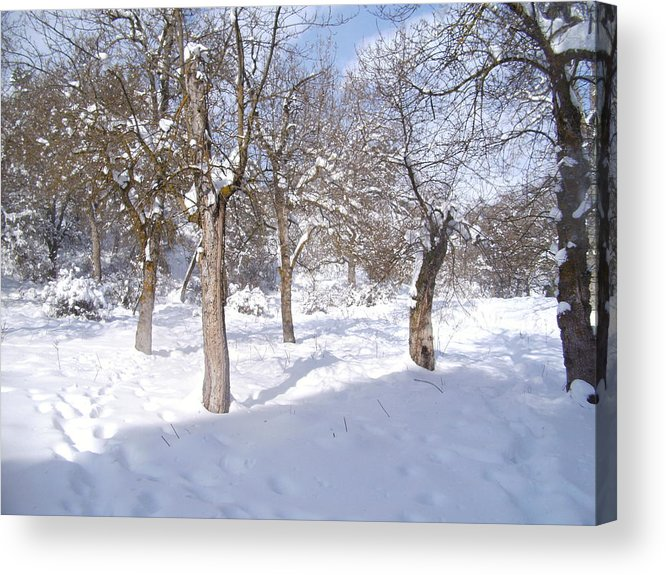 Time To Fix The Problem Acrylic Print featuring the pyrography Forest Ofconstantine by Boultifat Abdelhak badou