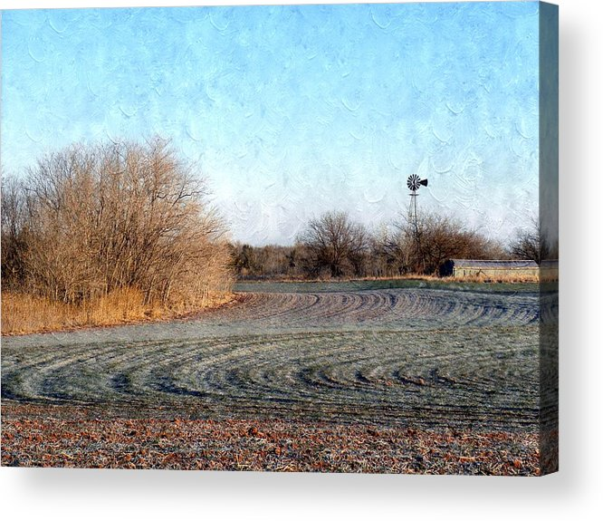Frost Acrylic Print featuring the photograph Frosted Wheat by Annie Adkins