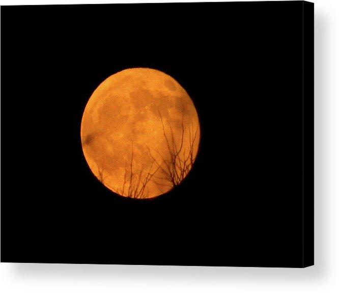 Full Moon Acrylic Print featuring the photograph Full Moon Dec.10.2011 by Laura Yamada