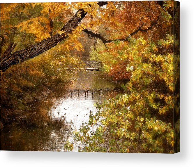 Autumn Acrylic Print featuring the photograph Golden Days by Jessica Jenney