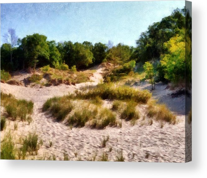 Nature Acrylic Print featuring the photograph In The Dunes by Michelle Calkins
