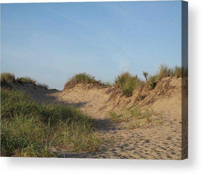 Landscape Acrylic Print featuring the photograph Lieutenant Island Dunes by Barbara McDevitt
