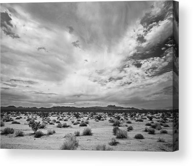 Pentax 67ii Acrylic Print featuring the photograph Mojave National Preserve by Mike Herdering