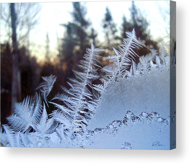 Ice Acrylic Print featuring the photograph Nature Repeats Itself by Nancy Griswold