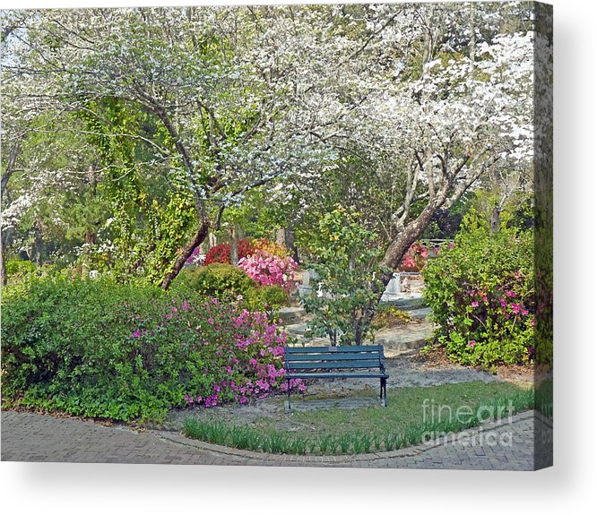 Park Acrylic Print featuring the photograph Park Bench Painting by Linda Vodzak