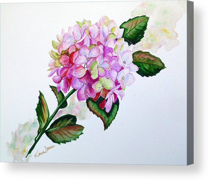 Hydrangea Painting Floral Painting Flower Pink Hydrangea Painting Botanical Painting Flower Painting Botanical Painting Greeting Card Painting Painting Acrylic Print featuring the painting Pretty In Pink by Karin Dawn Kelshall- Best