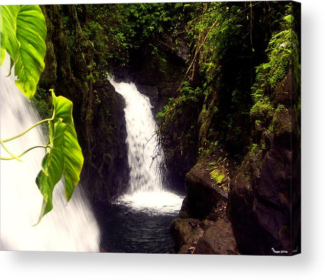 La Paz Acrylic Print featuring the photograph Rain Forest Grotto With 2 Waterfalls by Michael Kogan