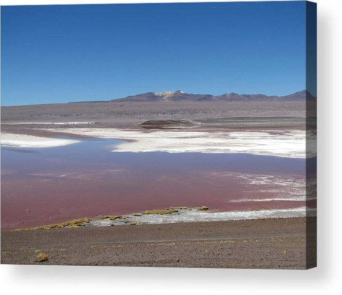 Lagoon Acrylic Print featuring the photograph Red Lagoon by Elizabeth Hardie