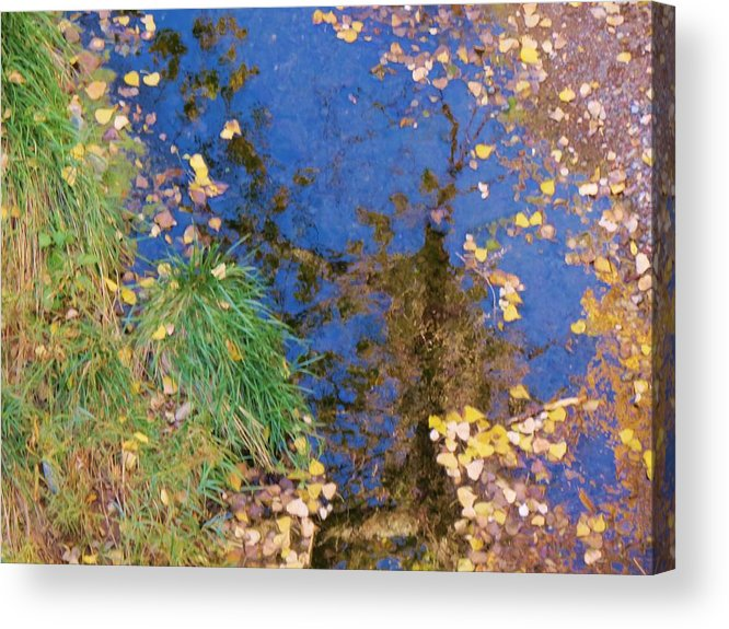 Fall Acrylic Print featuring the photograph Reflections Of Fall by Feva Fotos