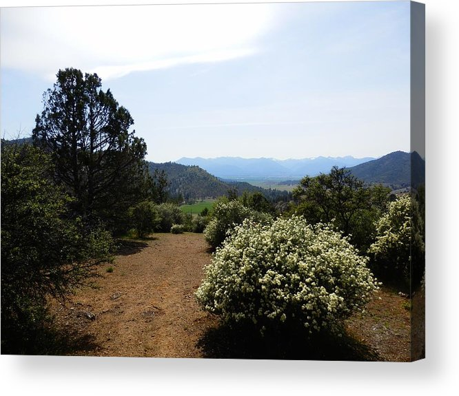 Trail Acrylic Print featuring the photograph Ridgetop Trail Continues by William McCoy