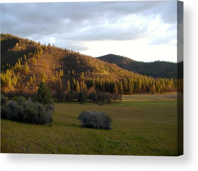 Autumn Acrylic Print featuring the photograph Rusty Tones Of Autumn by William McCoy