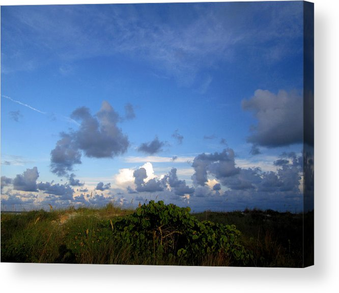 Acrylic Print featuring the photograph Sb 26 by Pepsi Freund