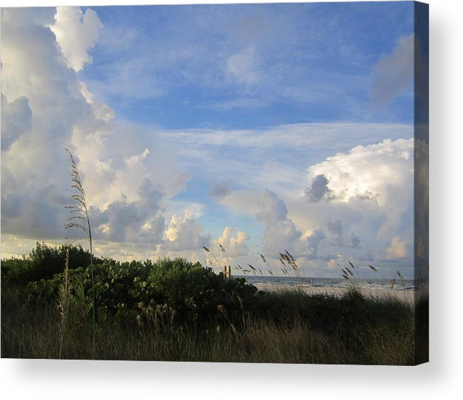 Acrylic Print featuring the photograph Sb33 by Pepsi Freund