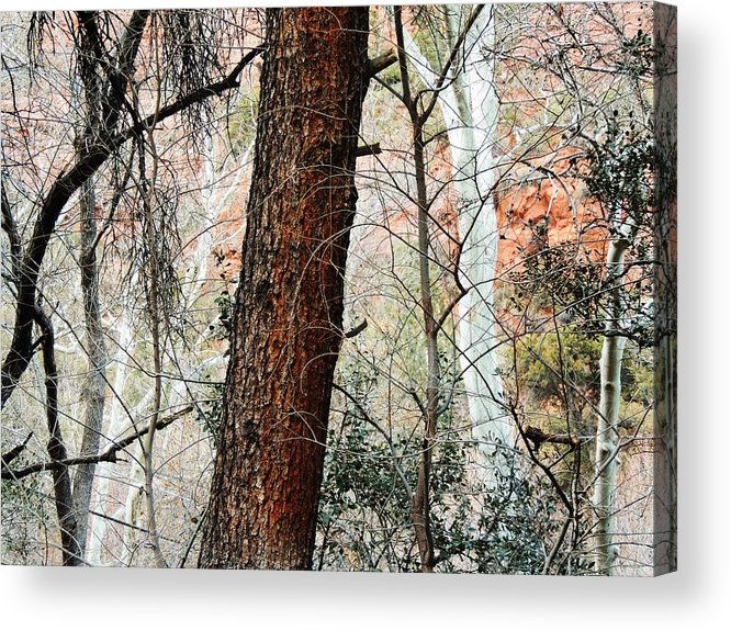 Red Acrylic Print featuring the photograph Sedona Layers by Todd Sherlock