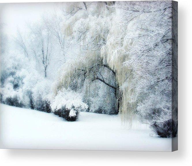 Snow Dream Acrylic Print featuring the photograph Snow Dream by Julie Palencia