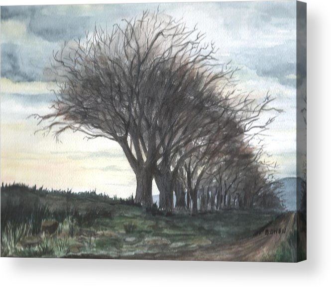 Watercolor Acrylic Print featuring the painting The Sentinels by Brenda Owen